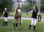 Международная выставка конной индустрии «ЭквиФорум»