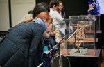 10 тысяч человек посетило выставку «Гений да Винчи» за три недели