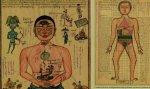 Уникальный атлас тибетской медицины представят в петербургском музее
