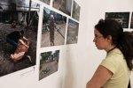 В Москве пройдет фотовыставка «Донбасс. Хроники гуманитарной катастрофы»