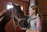 """Крупнейшая конная шоу-выставка откроется в парке """"Сокольники"""" 16 октября"""